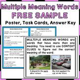 Multiple Meaning Words Activities FREEBIE