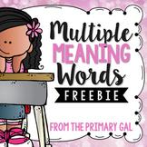 Multiple Meaning Word FREEBIE!