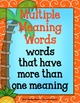 Multiple Meaning Words {Anchor Charts, Center, Worksheets