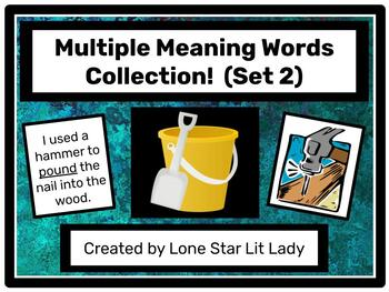 Multiple Meaning Words Collection! Game - Set 2