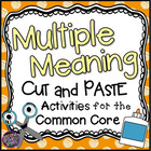 Multiple Meaning Words or Homographs