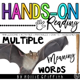 Multiple-Meaning Words: Homonyms {Hands-on Reading}