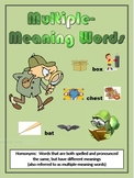 Multiple-Meaning Words (Homonyms) Using Context Clues Activity Book