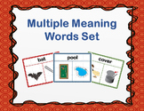 Multiple Meaning Words Set