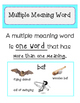 Multiple Meaning Words Unit