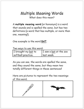 Multiple Meaning Words for Functional Use Packet