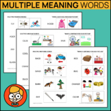 Multiple Meaning Words with Visuals
