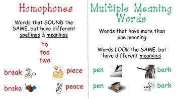 Multiple Meaning vs. Homophones Visual