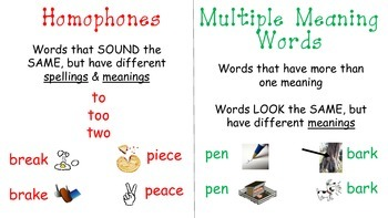 Multiple Meaning vs. Homophones Visual