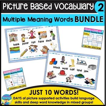 Homonyms: Multiple Meaning Vocabulary Bundle