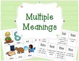 Multiple Meanings - Homophones *Freebie*