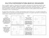 Multiple Representations Graphic Organizer