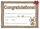 Multiplication Certificates Bee Theme (0-12 times tables)