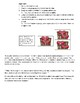 Multiplication & Division Situations Math TEKS 2.6(A) (B)