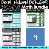 Multiplication Facts Digital Self-checking Hidden Pixel Pi