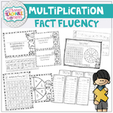 Multiplication Fluency