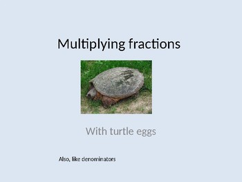 Multiplying Fractions with Turtle Eggs