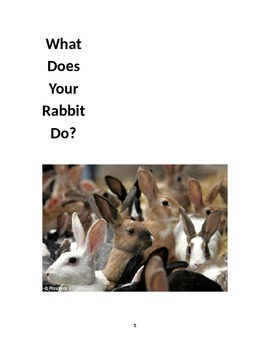 Multisensory Book - Reading through movement - Level A book - My Rabbit