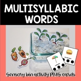 Multisyllabic Words for Speech and Phonological Awareness