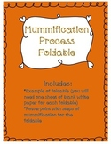 Mummification Process Foldable