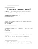 Mummy Measurement and Estimation