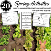 SPRING ACTIVITIES Plants Life Cycles Nonfiction Text and Book Companions