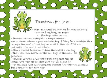 Munching Frogs! An Antonym Matching Game