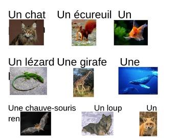 Mur de mots (French word wall) Grades K-4