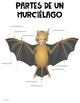 Murcielagos Bat Informationational Text Unit Bilingual/Spanish Growing Bundle