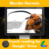 Murder Hornets - reading for French learners - Google Driv