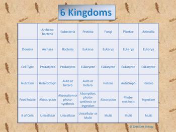 6 Kingdoms Chart by DrH Biology   Teachers Pay Teachers