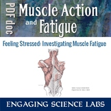 Muscle Fatigue Lab Activity: Human Body Study