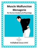 Muscle Malfunction Menagerie Worksheet for Human Anatomy & Physiology
