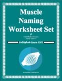 Muscle Naming Worksheet Set