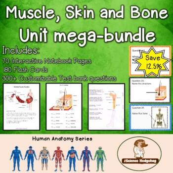 Muscle Skin Bones Unit Bundle!