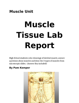 Muscle Tissue Lab Report