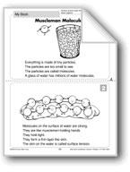 Muscleman Molecules (PHysical Science/Matter, Water)