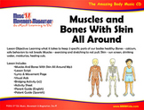 Muscles And Bones With Skin All Around - Song(Mp3), Lesson