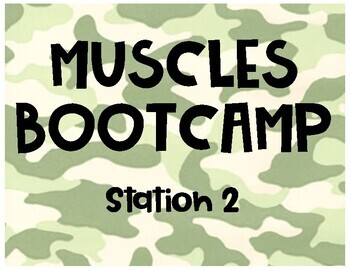 Muscles Bootcamp Activity