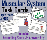 Muscles/ Muscular System Task Cards (Human Body Systems Activity)