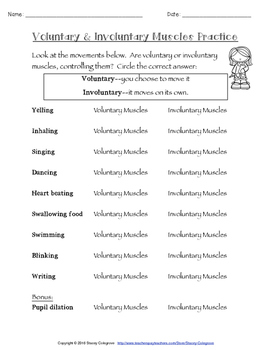 NGSS LS1 Muscular System--5Es lesson plan, worksheets, activities, content info