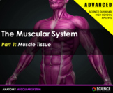 PPT - Muscular System (ADVANCED) - Muscular Tissue, Synapses, Muscles, Disorders
