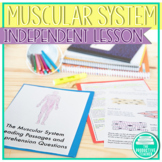 Functions of the Muscular System Worksheets and Reading Passages