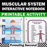 Muscular System Activities supplements Body Systems Unit