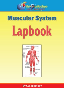 Muscular System Lapbook