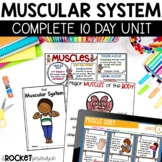 Muscular System complete unit with lesson plans, facts book, diagrams, and more