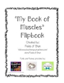 Muscular System --My Book of Muscles Flipbook--