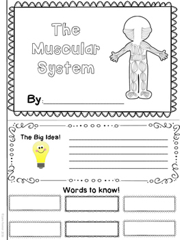 Muscular System Note taker/Booklet