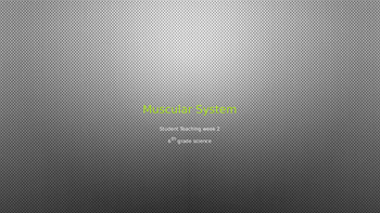 Muscular System PowerPoint