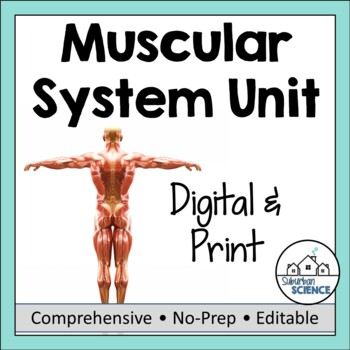 Muscular System- PowerPoint, Notes, Diagrams, & Inquiry La